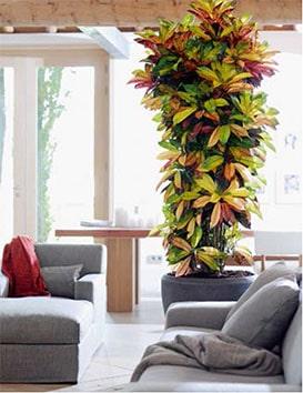 jardin d 39 int rieur un vrai coin de nature maisons vivre magazine. Black Bedroom Furniture Sets. Home Design Ideas