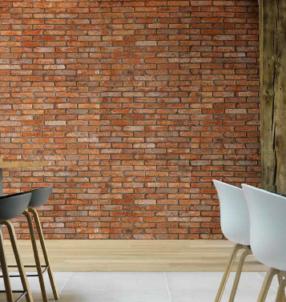 Vintage ton rouge ». Ces briques anciennes en terre cuite, présentées en parements, sont un gage d'authenticité. Elles se posent avec une colle spéciale. Une plaquette mesure 24 x 5,2 x 2,2 cm. A partir de 72 €/ m². www.brikelia.fr