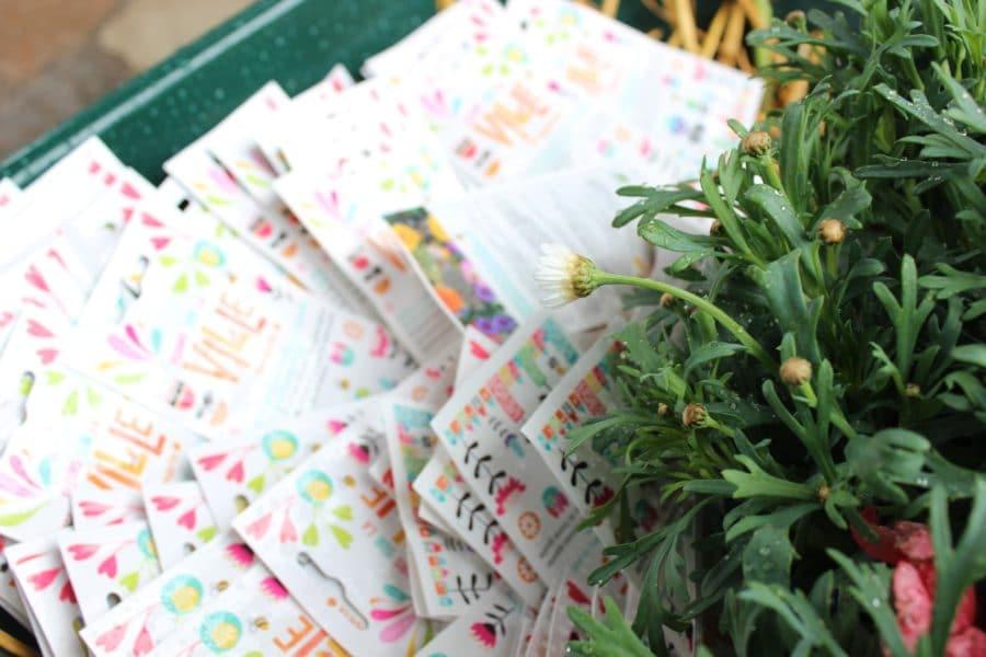 Fleurs sur la ville : faîtes du bien avec du beau