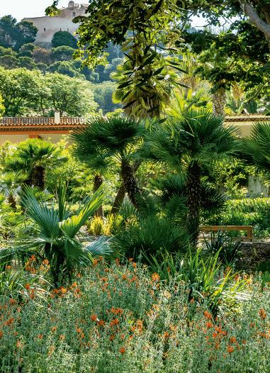 Un jardin méditerranéen