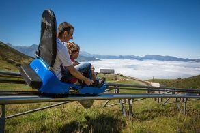 Mountain luge