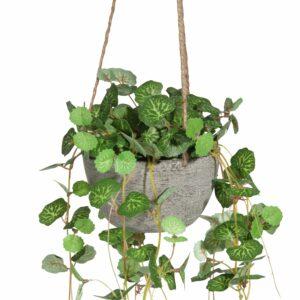Plante artificielle suspendue