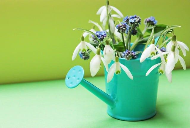 arrosoir fleurs upcycling