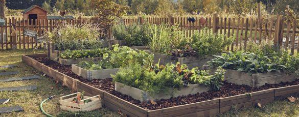 Astuces Leroy Merlin eau jardin