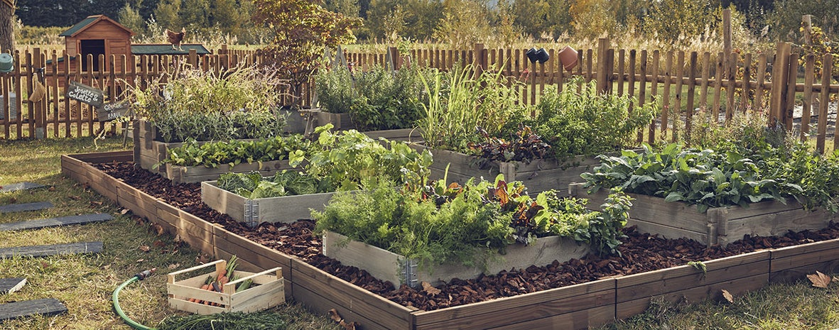 4 astuces Leroy Merlin pour une gestion responsable de l'eau au jardin